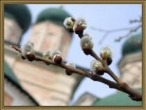 Подготовка к празднику Вербного воскресенья в приходах Архангельской митрополии
